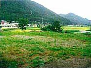 広いので分割や多目的ホールも 辰野町大字辰野土地