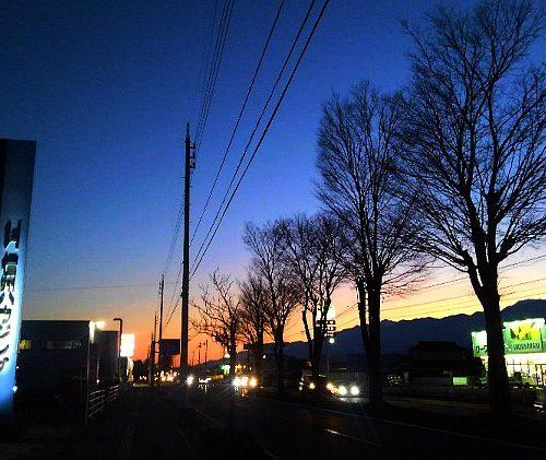 街路樹と夕焼け